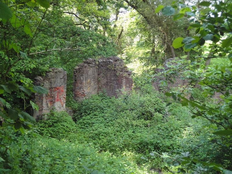 Papiermühle bei Harreshausen