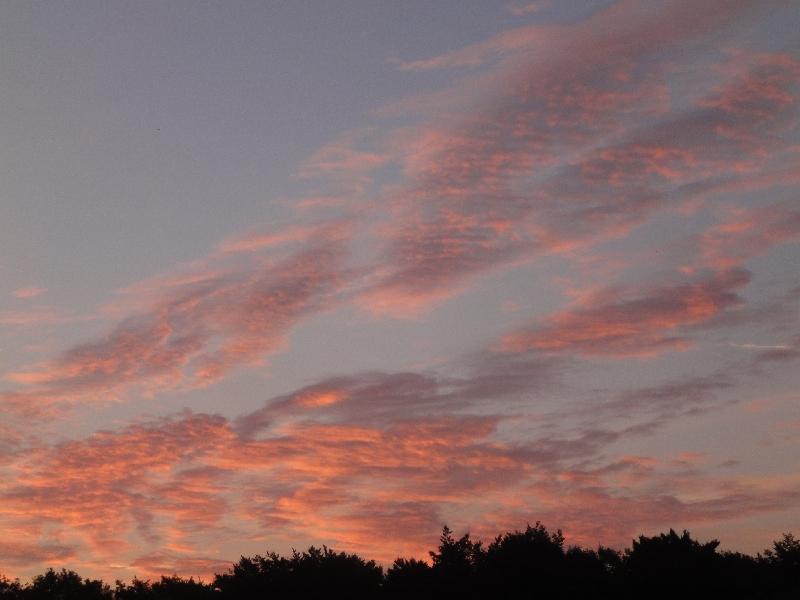 Der frühe Vogel - Start vor Sonnenaufgang