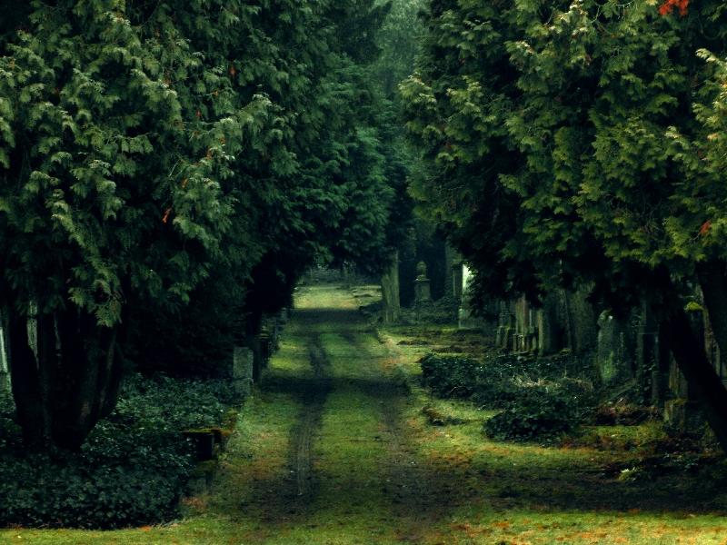 Jüdischer Friedhof in Bessungen