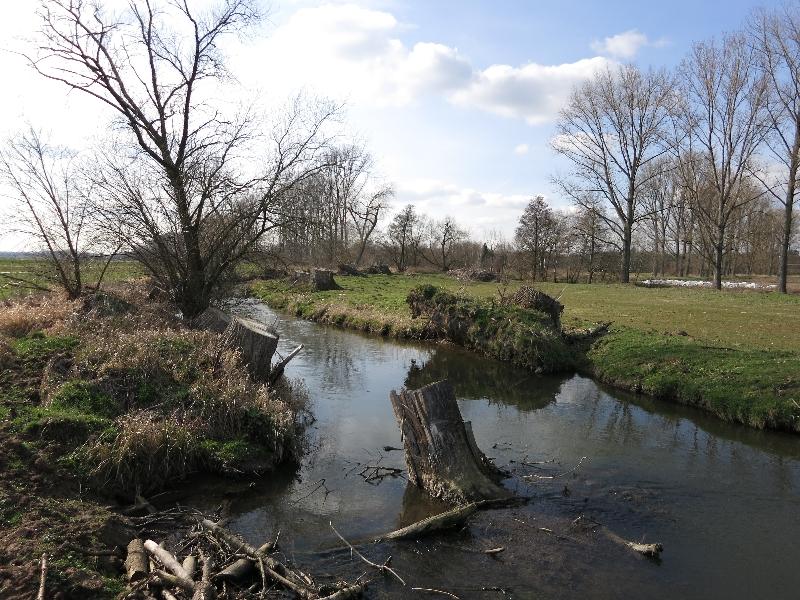 Naturschutzareal Hergershäuser Wiesen