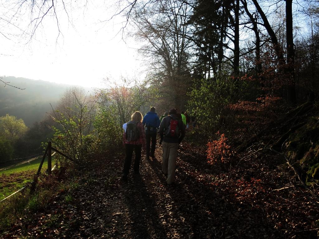 Herrliche Wanderwege in Heubach