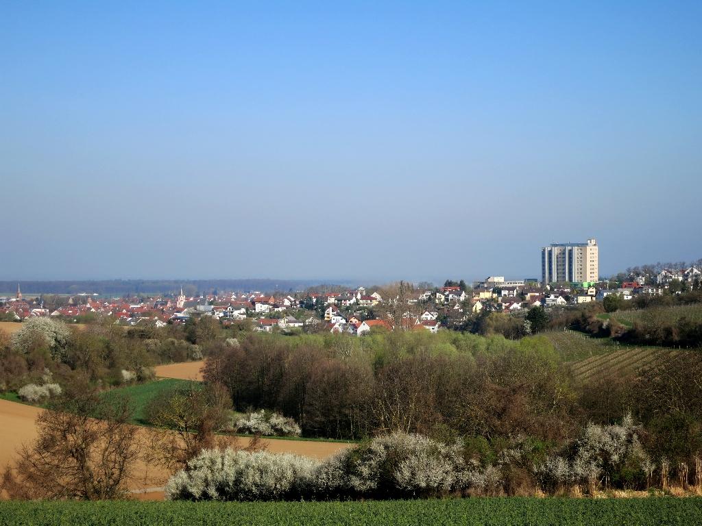 Blick auf Gross-Umstadt