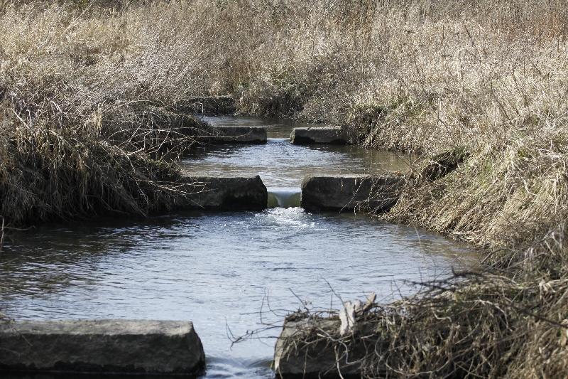 Fischtreppe an der Gersprenz