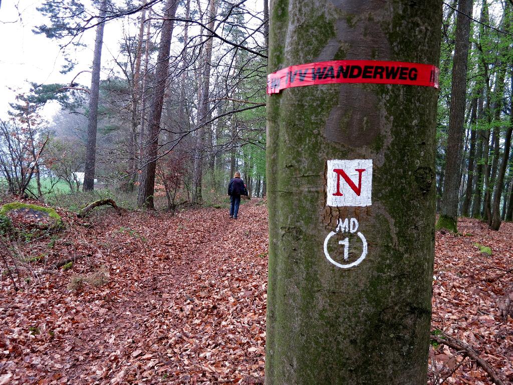Auf dem Nibelungensteig
