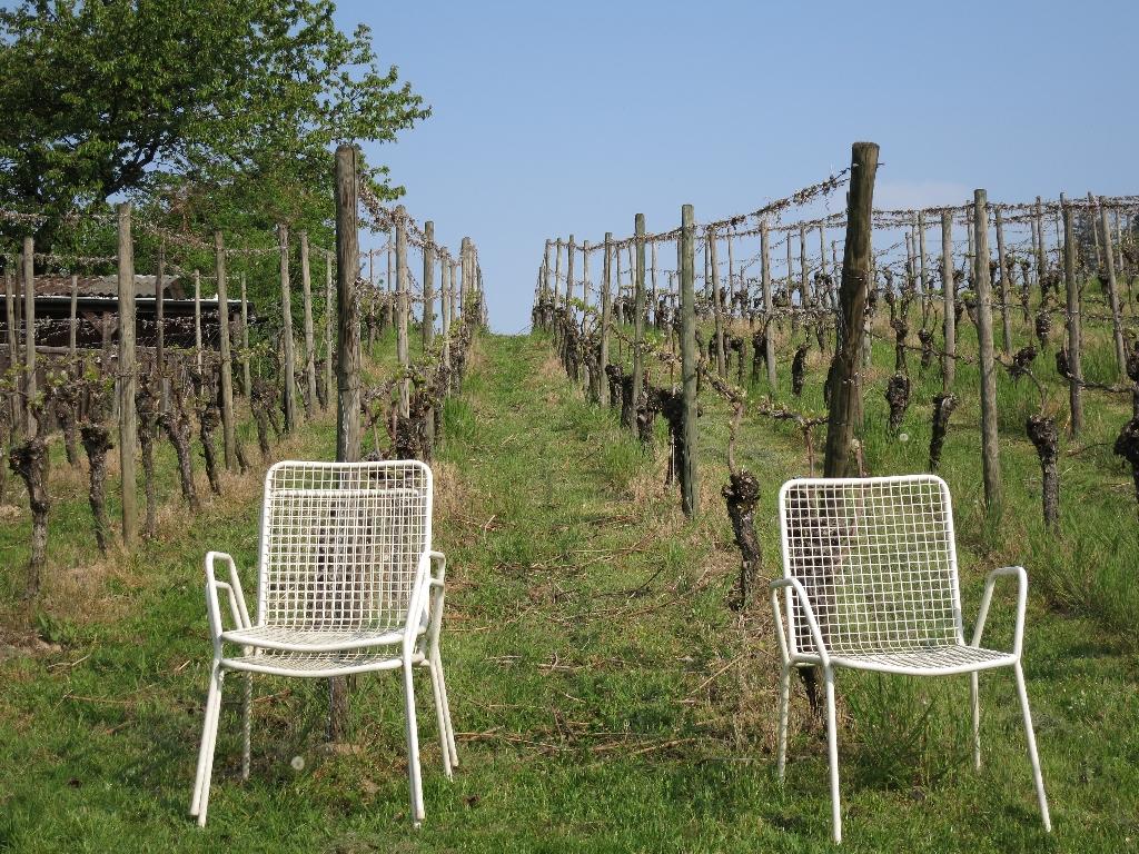 Weinlagenruheplatz
