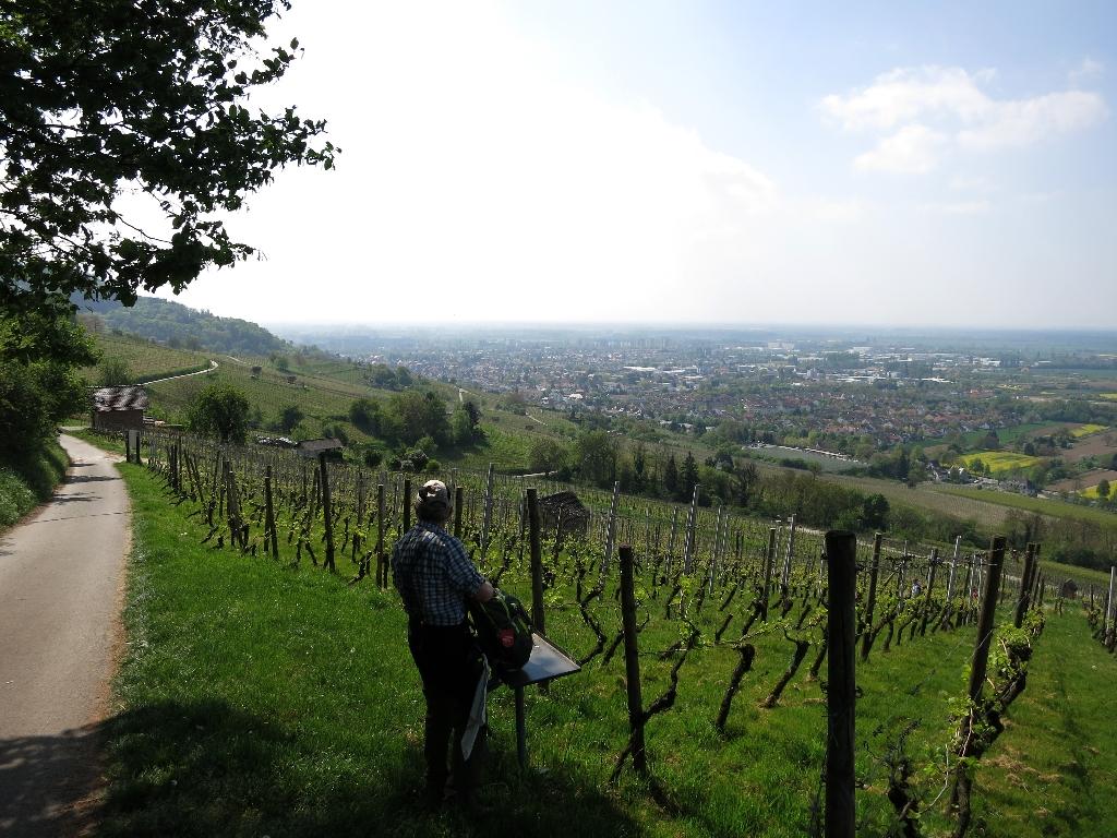 Premiumblicke vom Weinlagenweg