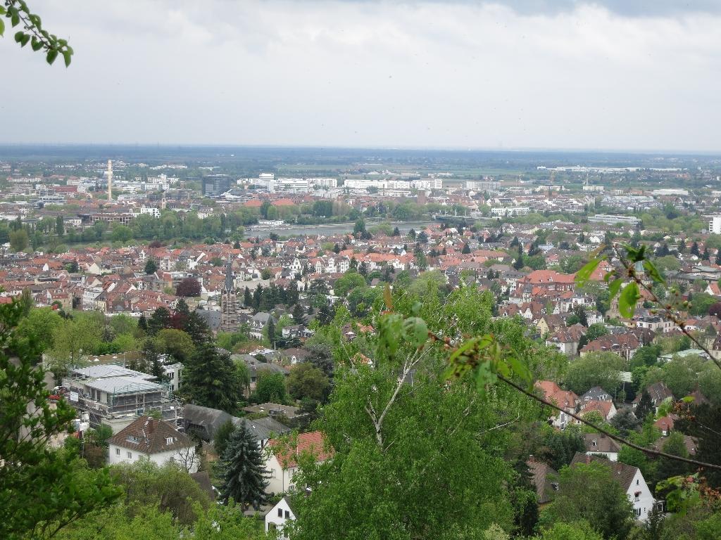 Blick in die Rhein-Neckar-Ebene