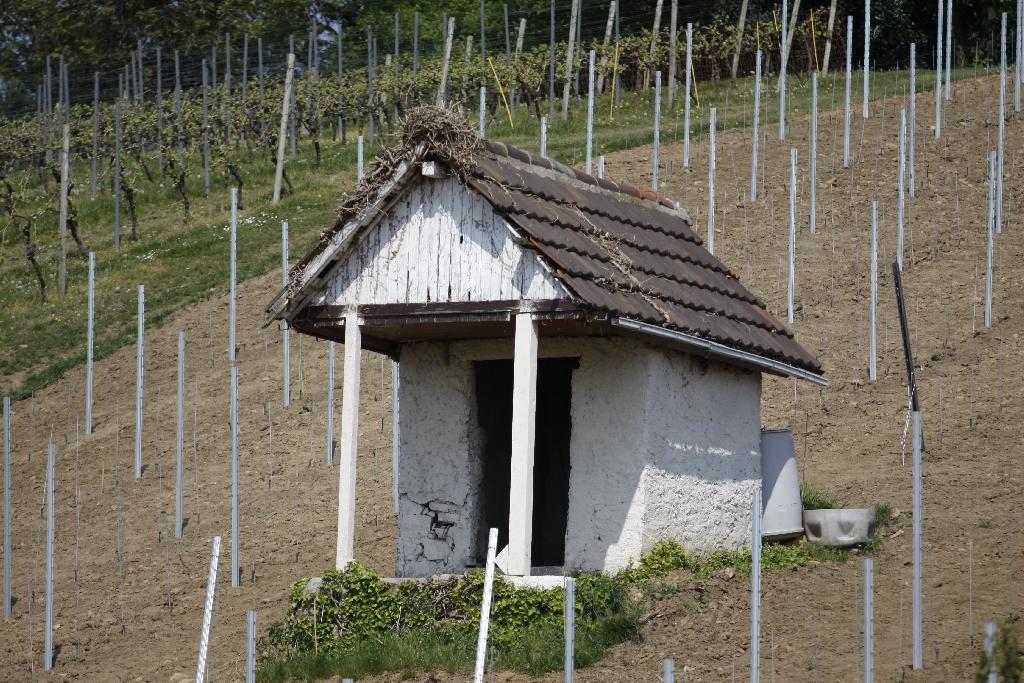 Weinhütte