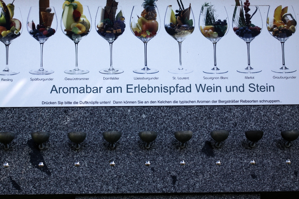 High-Tec- Weinlehrpfad