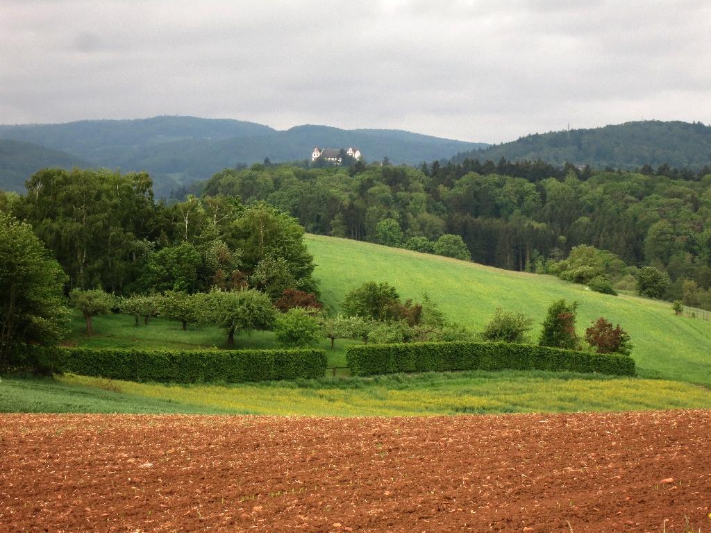 Blick auf Schloß Lichtenberg