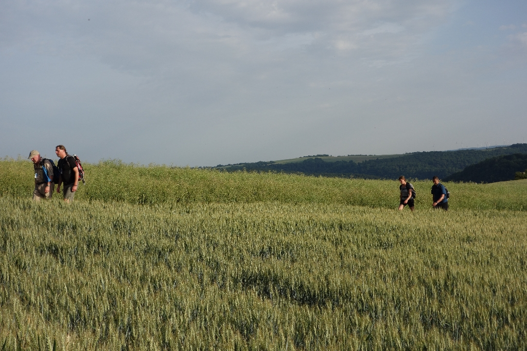 24 Stunden Rheintteig 2014 DSC00106