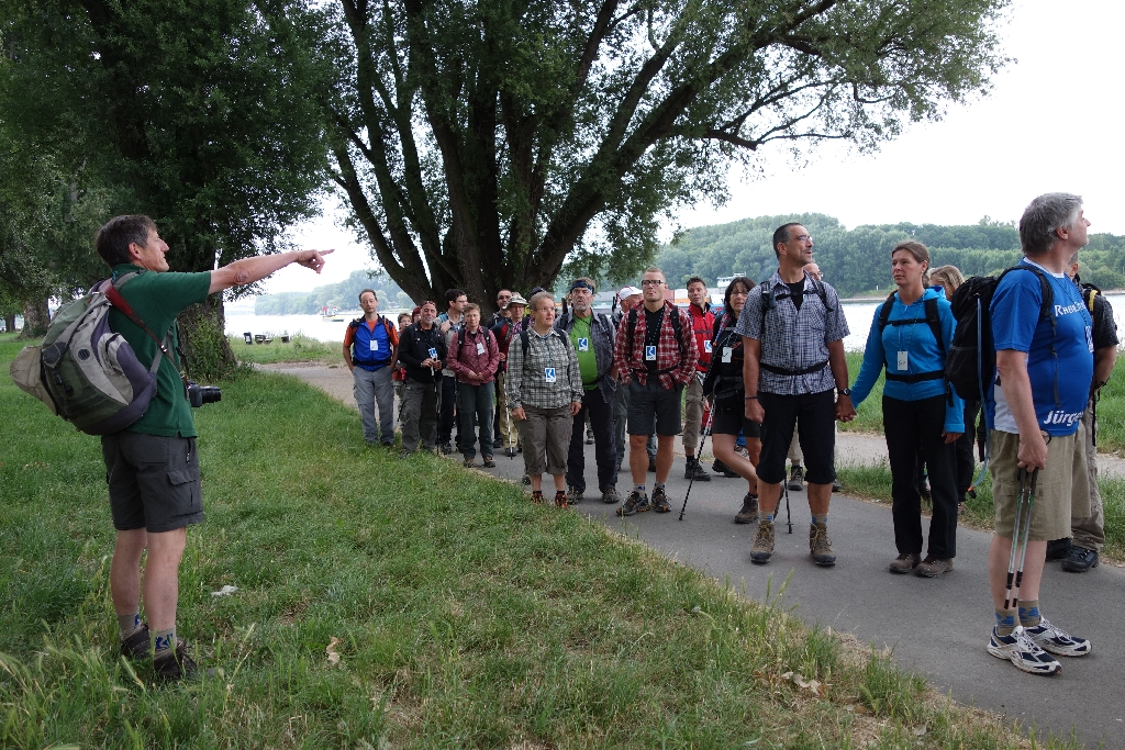 36 Stunden Rheinsteig ultra  DSC00291