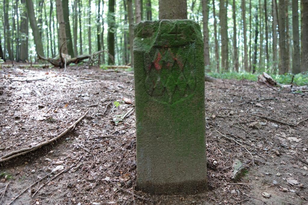 Odenwaldhölle_57