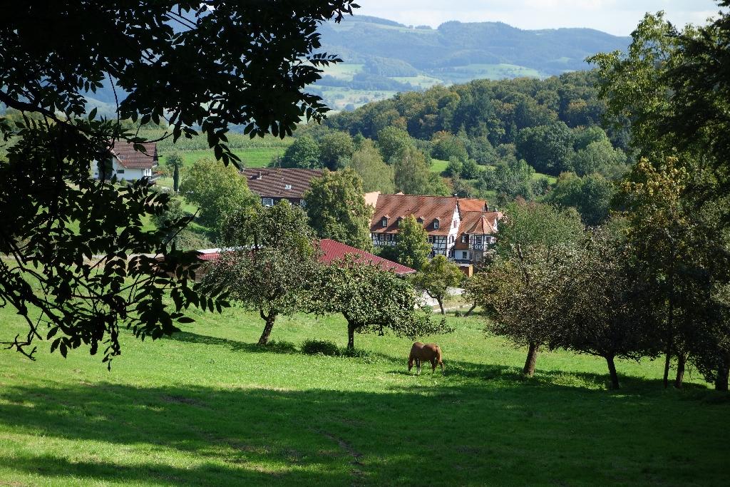Odenwaldhölle_72