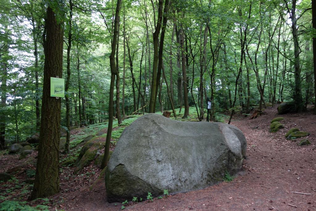 BurgensteigT2_48