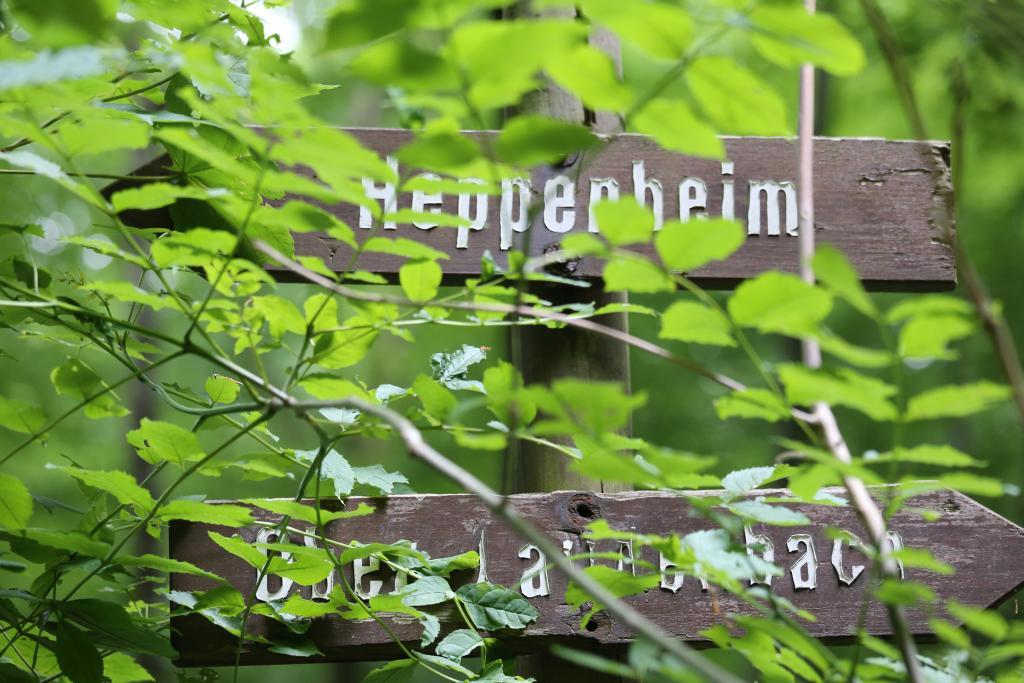 BurgensteigT2_88
