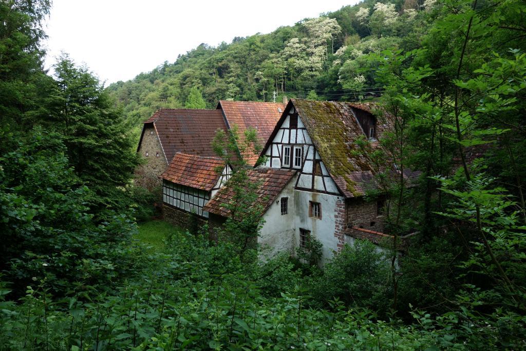 BurgensteigT3_3