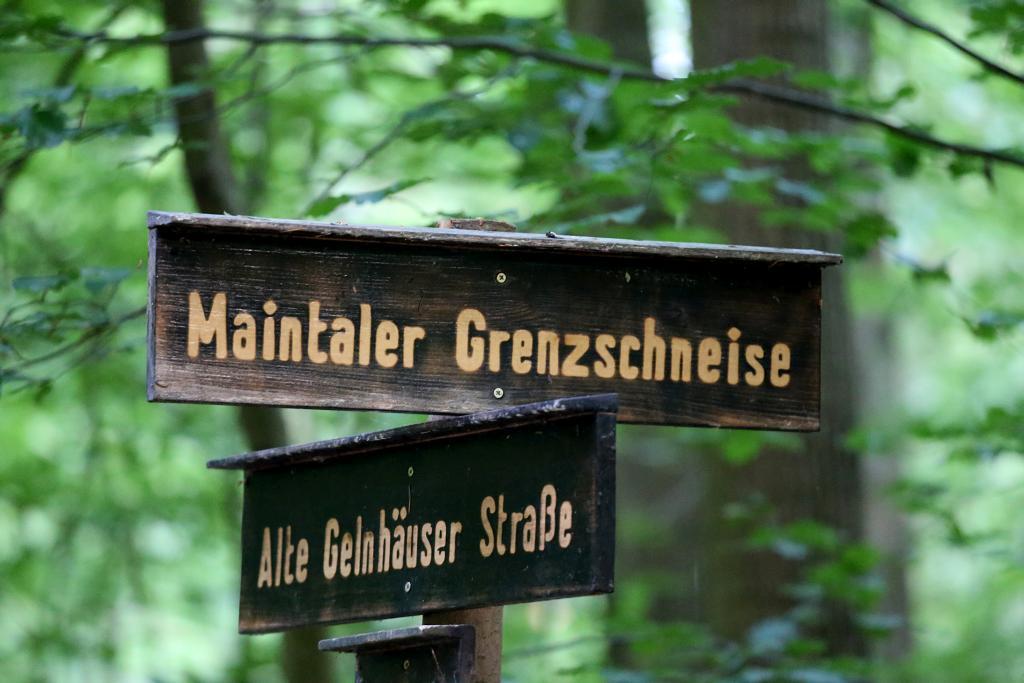 GrünGürtel_47
