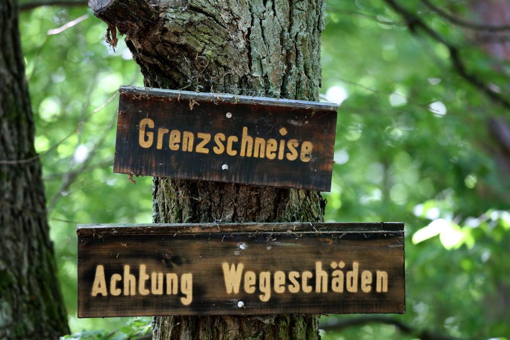 GrünGürtel_82
