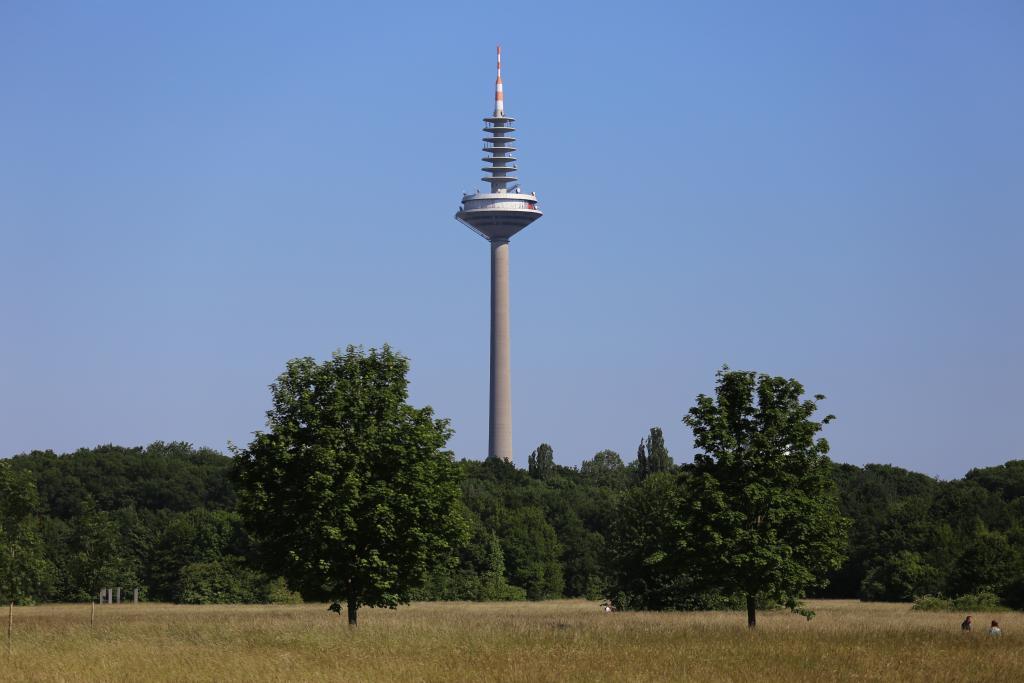 GrünGürtel_96