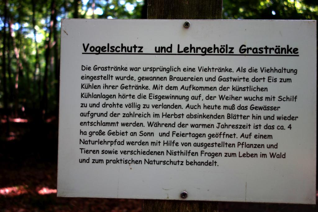 GrünGürtel_15