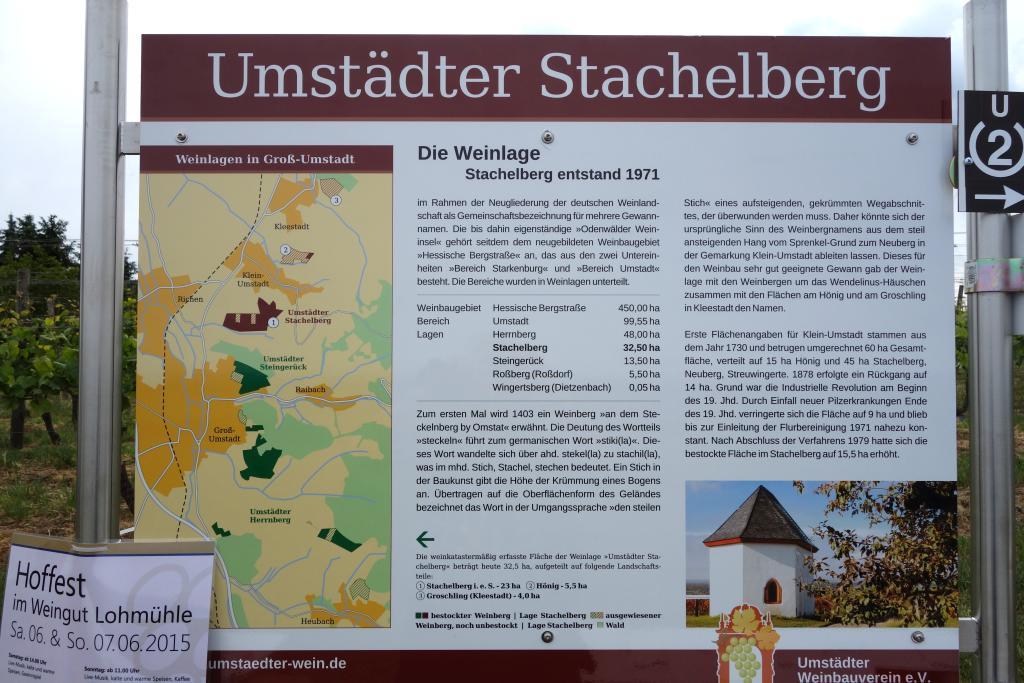 Weinlagenwanderung Gross Umstadt_12