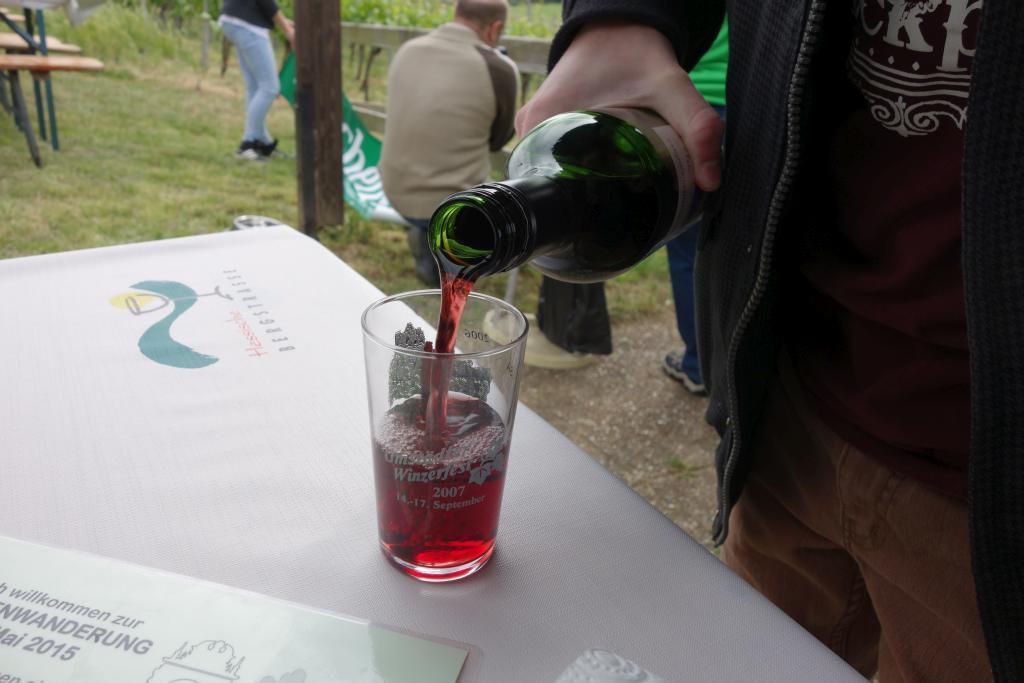 Weinlagenwanderung Gross Umstadt_13
