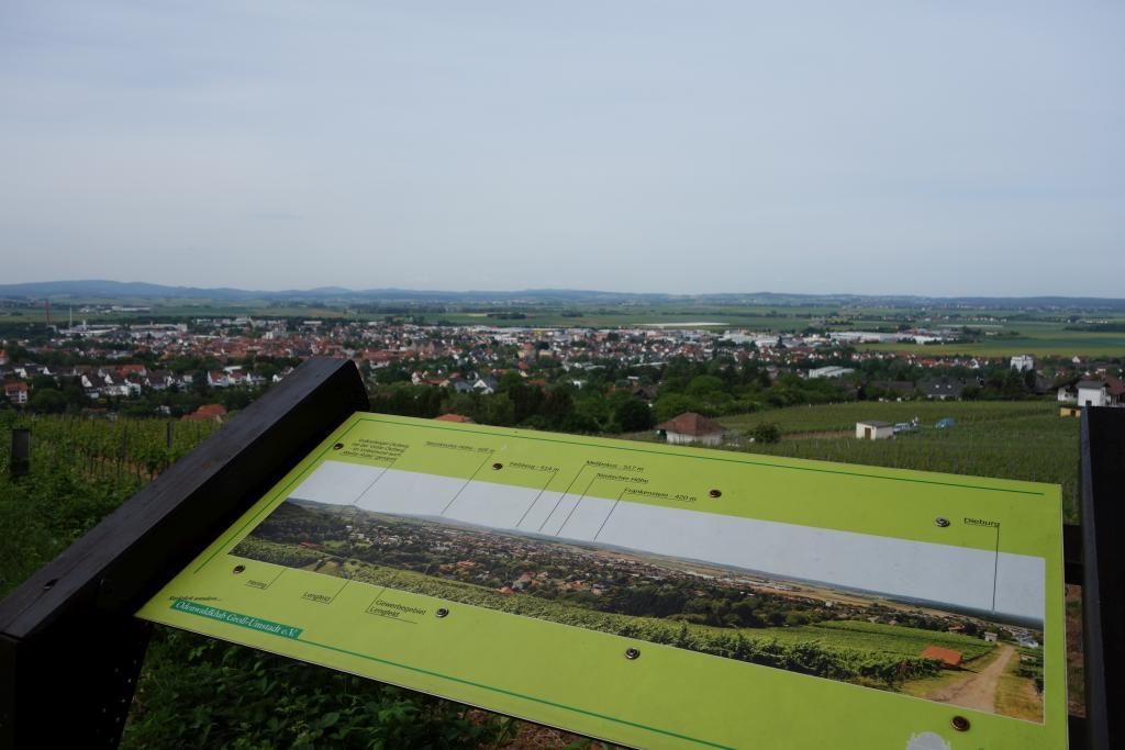 Weinlagenwanderung Gross Umstadt_19