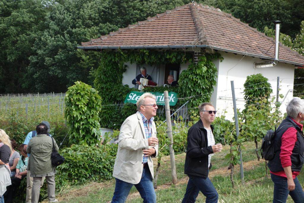 Weinlagenwanderung Gross Umstadt_22