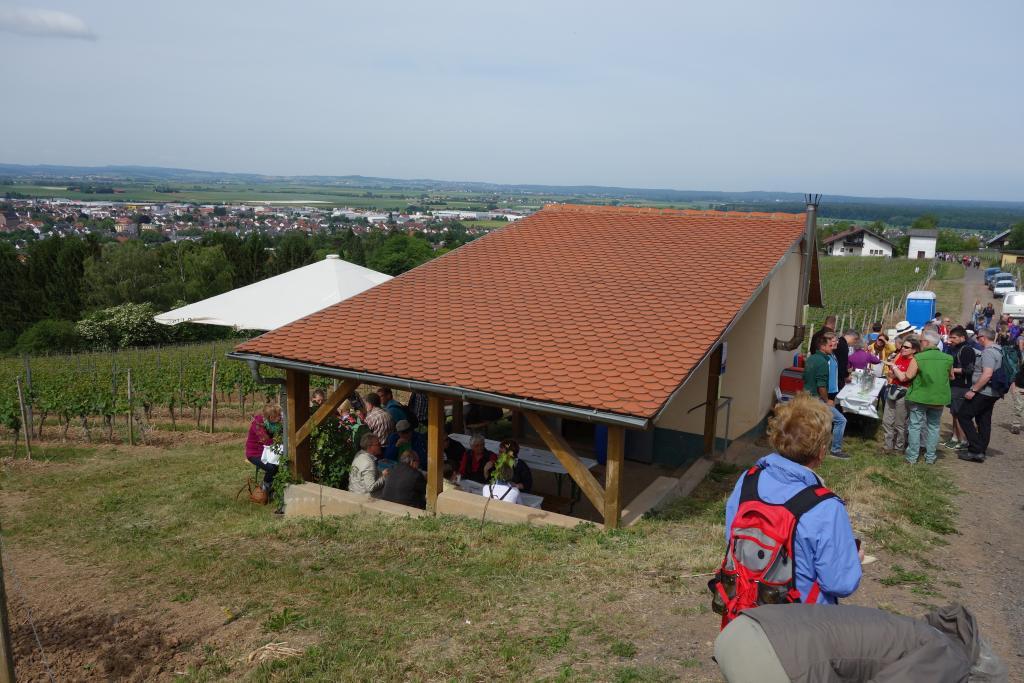 Weinlagenwanderung Gross Umstadt_24