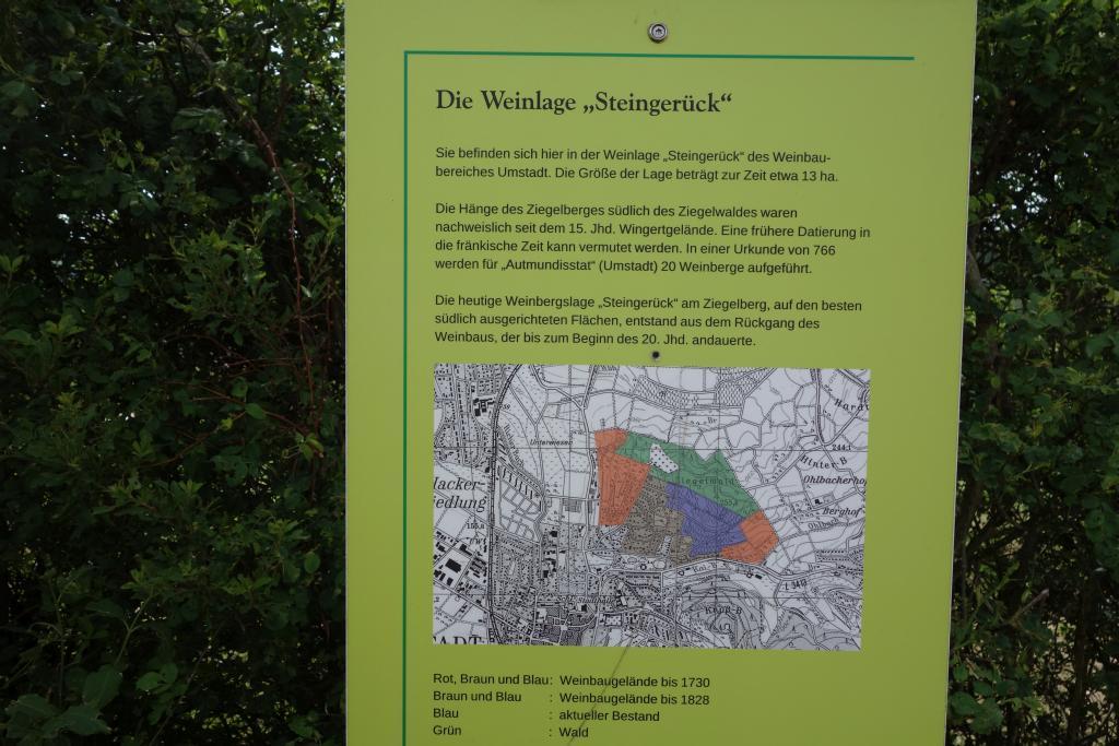 Weinlagenwanderung Gross Umstadt_26