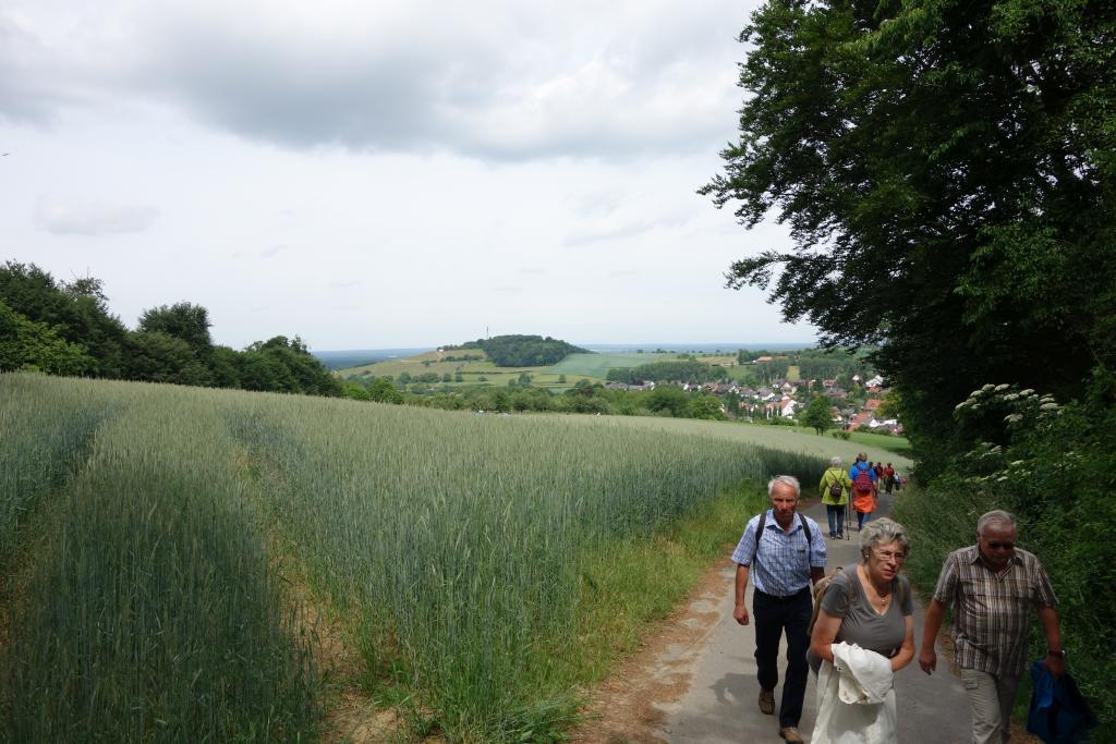Weinlagenwanderung Gross Umstadt_29
