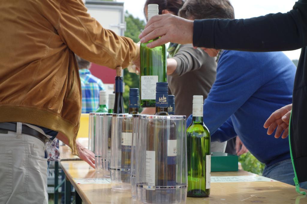 Weinlagenwanderung Gross Umstadt_32