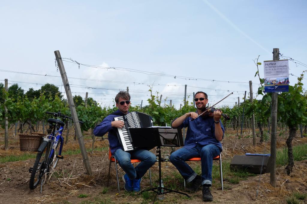 Weinlagenwanderung Gross Umstadt_33