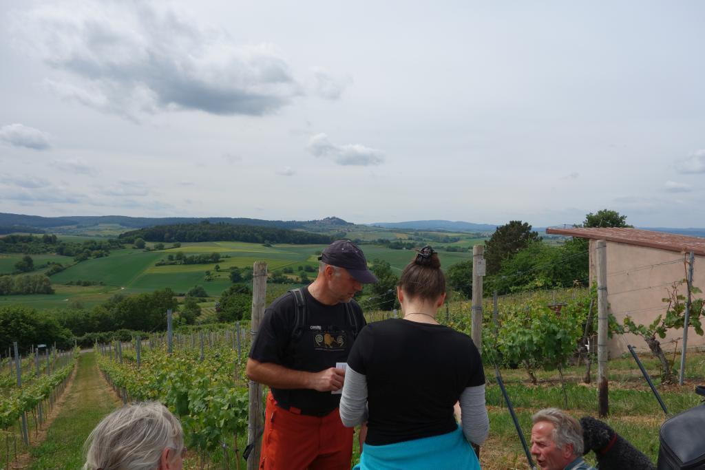 Weinlagenwanderung Gross Umstadt_34