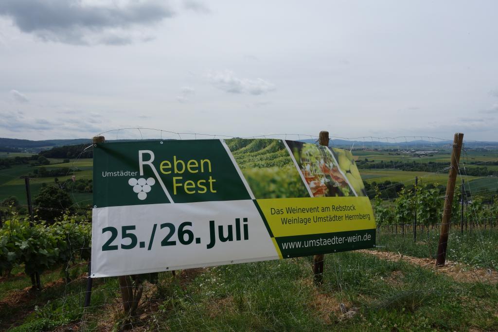 Weinlagenwanderung Gross Umstadt_36
