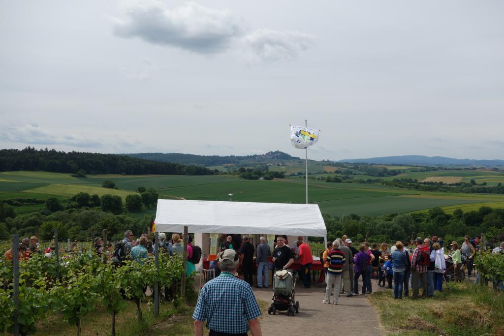 Weinlagenwanderung Gross Umstadt_38