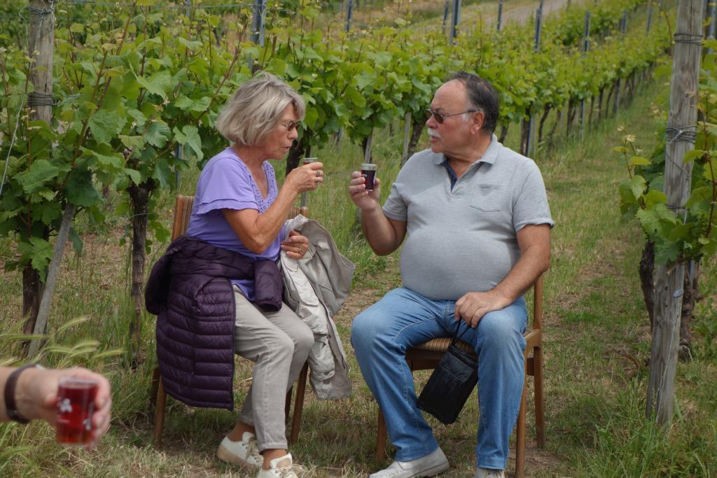 Weinlagenwanderung Gross Umstadt_43