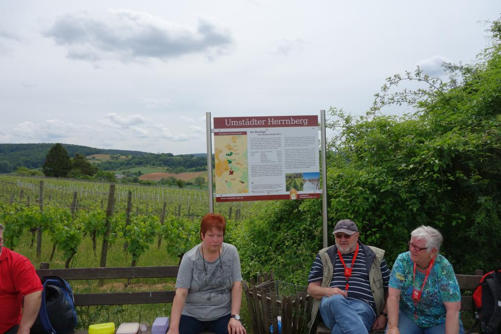 Weinlagenwanderung Gross Umstadt_44