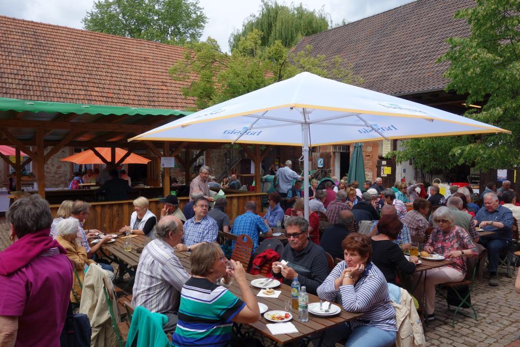 Weinlagenwanderung Gross Umstadt_46