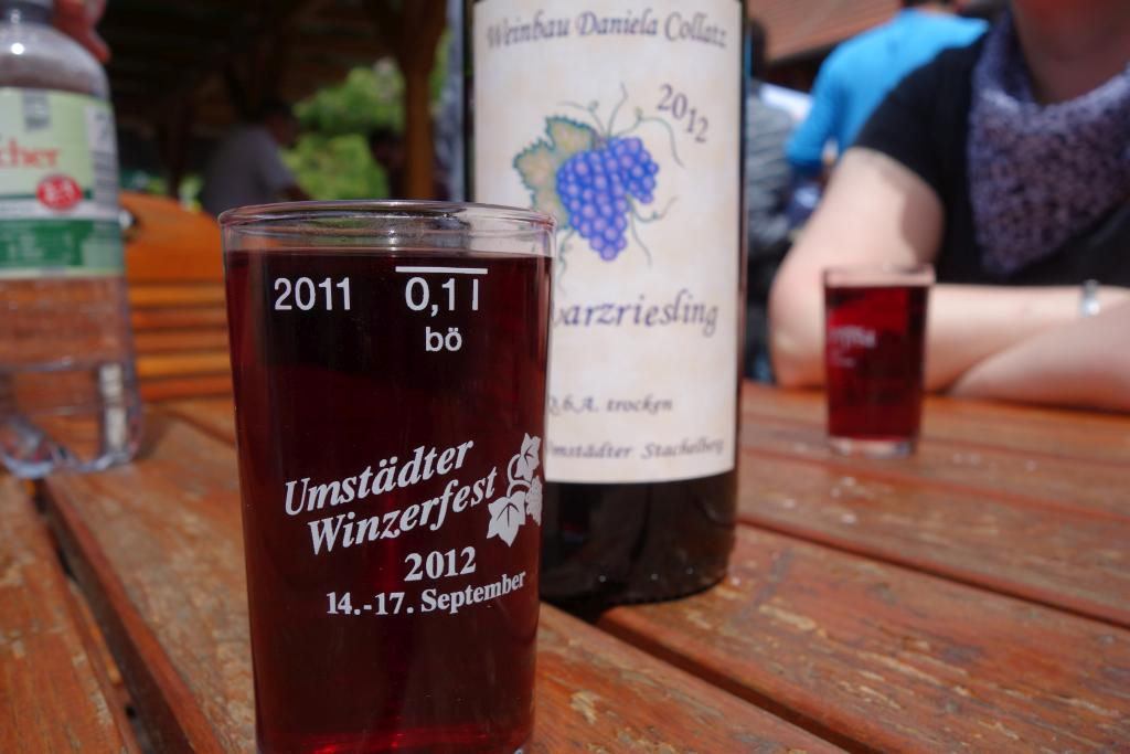 Weinlagenwanderung Gross Umstadt_48
