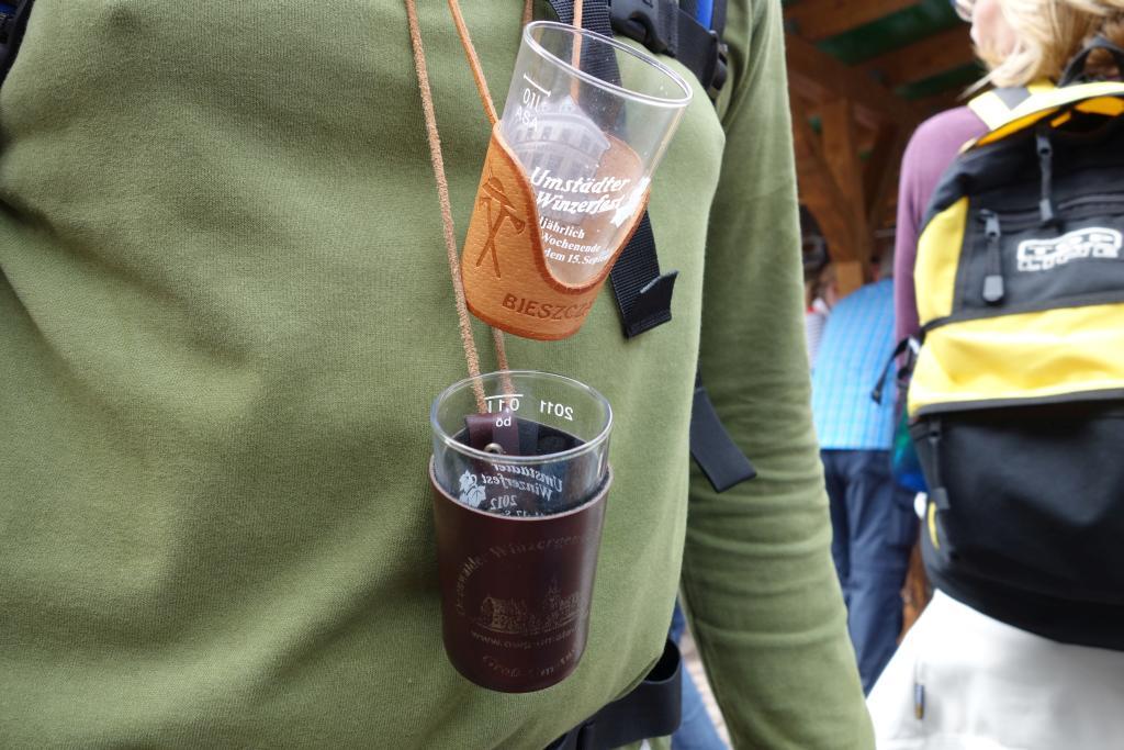 Weinlagenwanderung Gross Umstadt_49