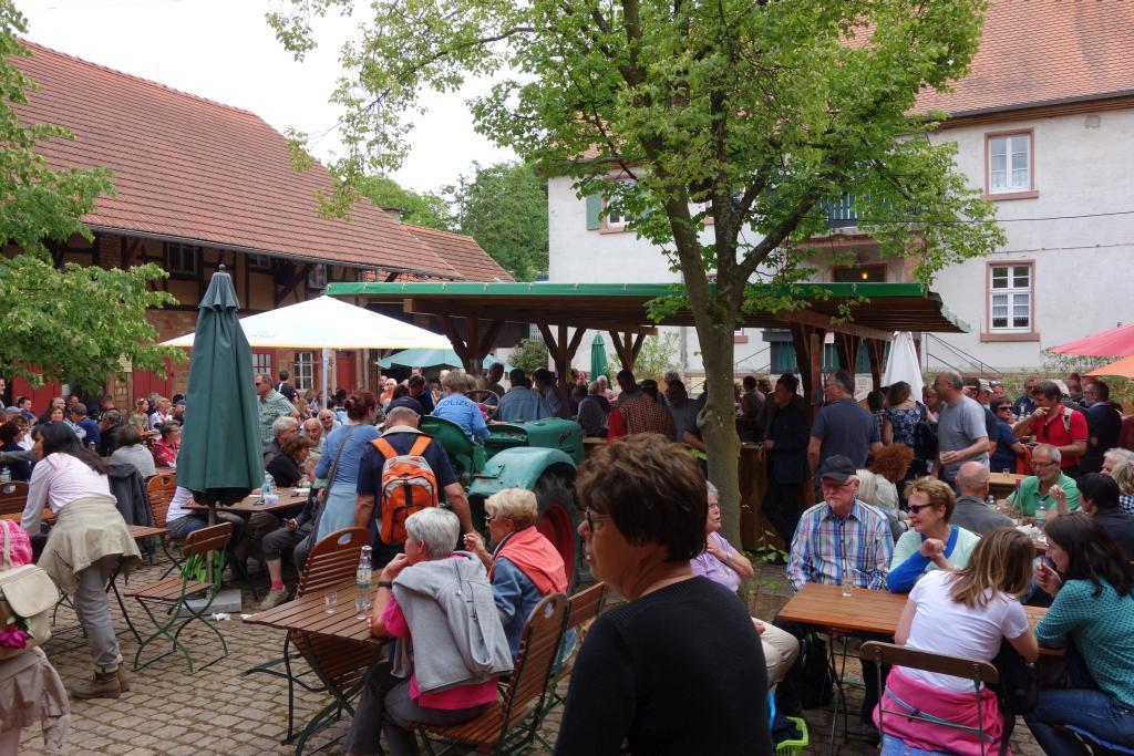 Weinlagenwanderung Gross Umstadt_50