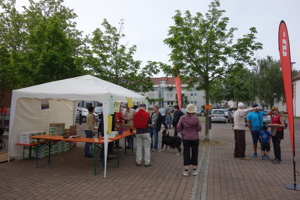 Weinlagenwanderung Gross Umstadt_6