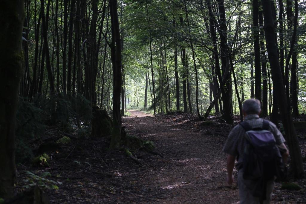 EinhardswegTrailA_16