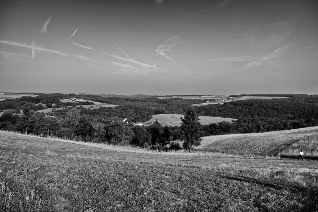 Staudernheim2015_6