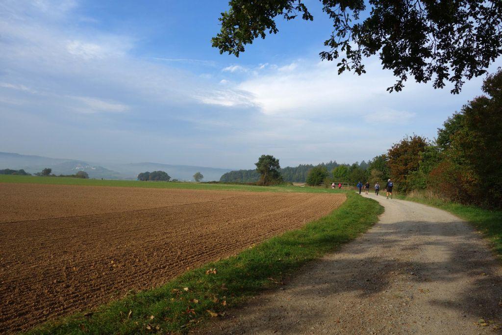 Fulda_IML_2015_13