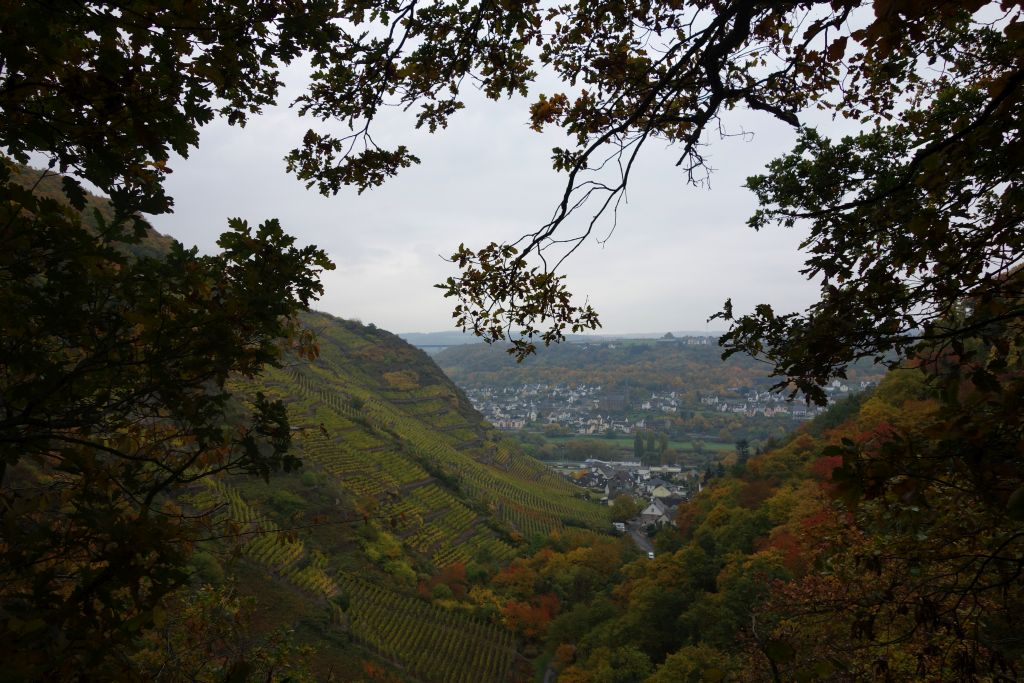Koblenz2015_10