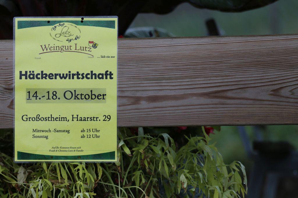 RotweinwanderwegI_44