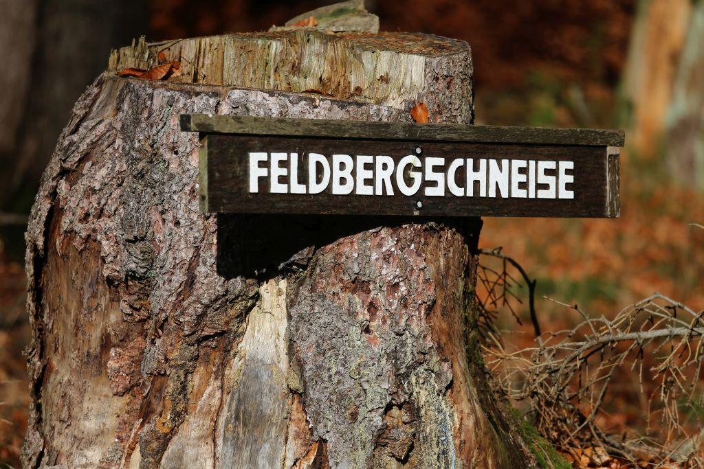 Feldberg_54